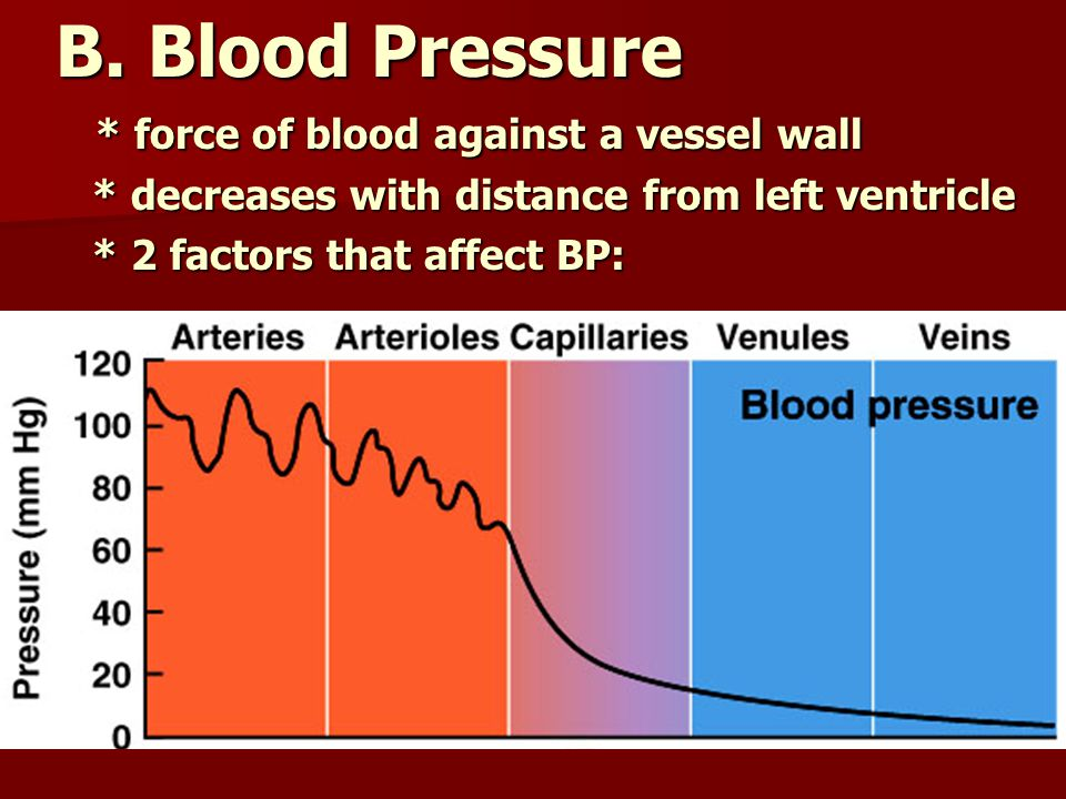 B. Blood Pressure * force of blood against a vessel wall