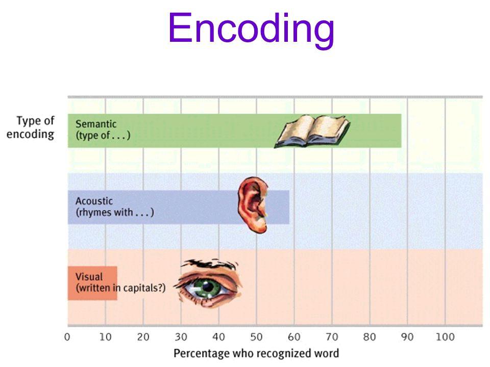 Encoding Module 21 06 23 11