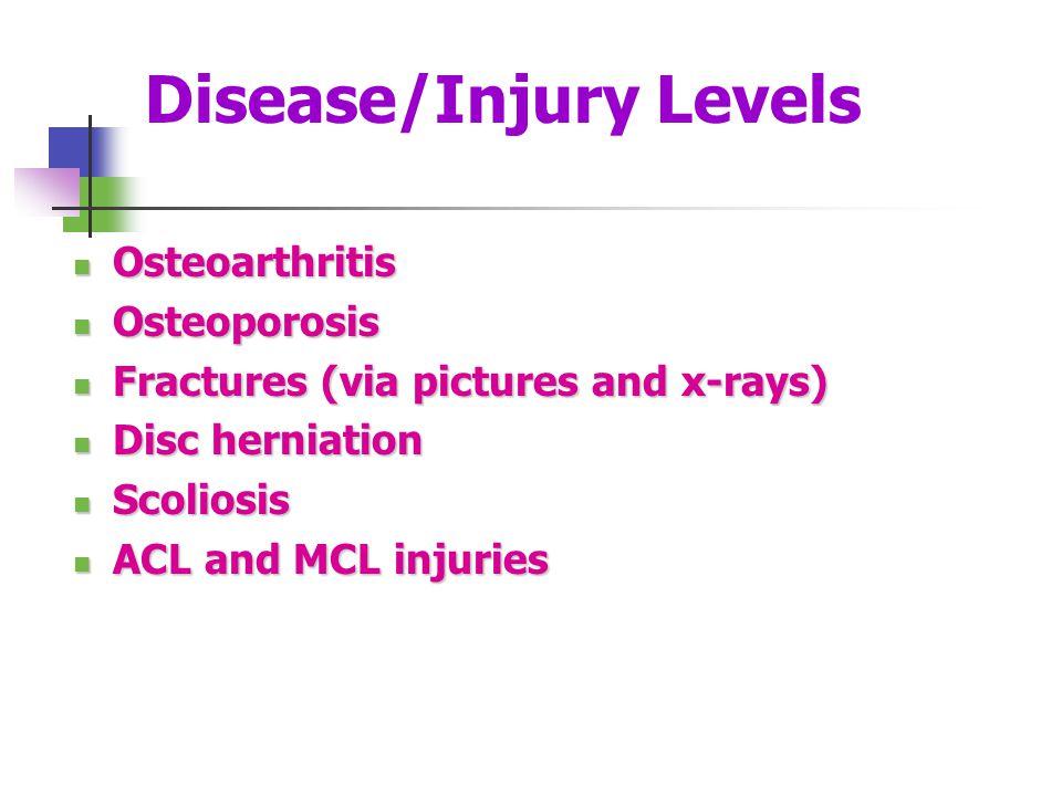 Disease/Injury Levels