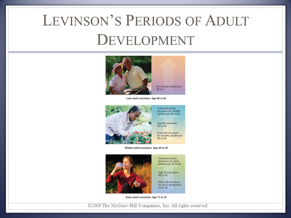 Levinson's Periods of Adult Development