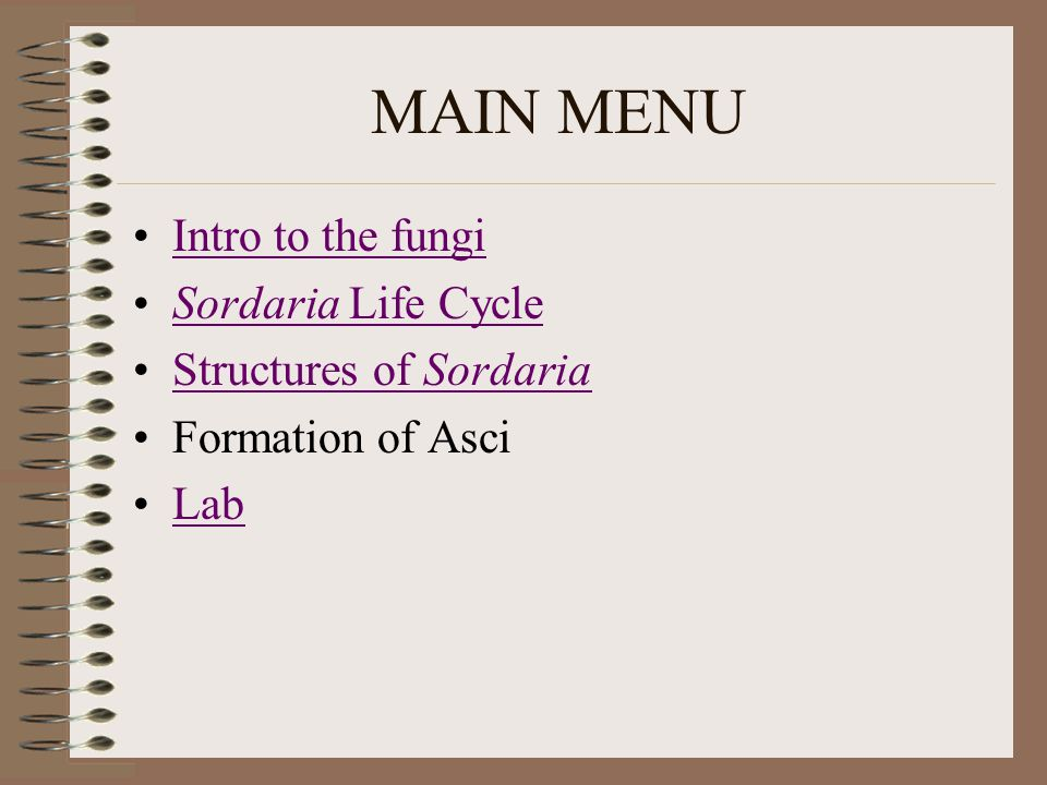 MAIN MENU Intro to the fungi Sordaria Life Cycle