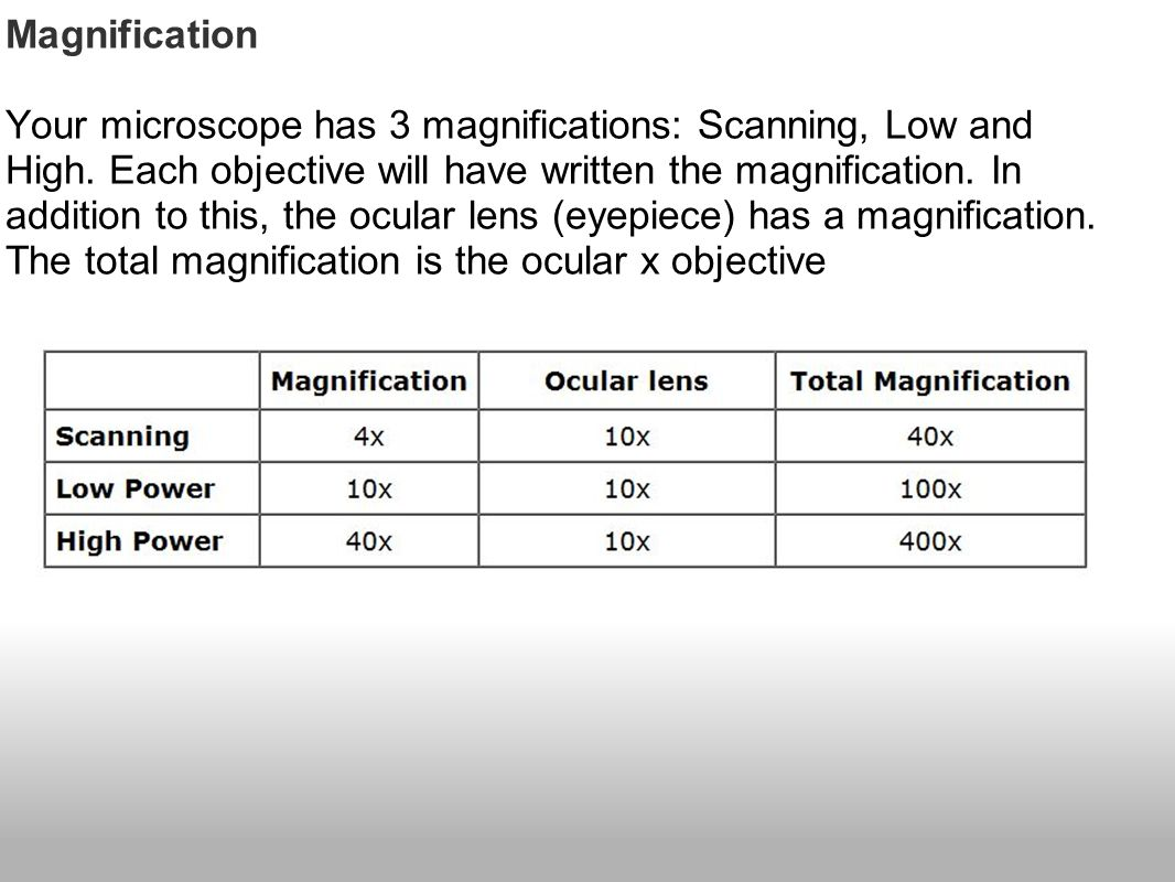Magnification Your microscope has 3 magnifications: Scanning, Low and High.
