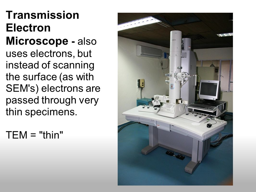Transmission Electron Microscope - also uses electrons, but instead of scanning the surface (as with SEM s) electrons are passed through very thin specimens.