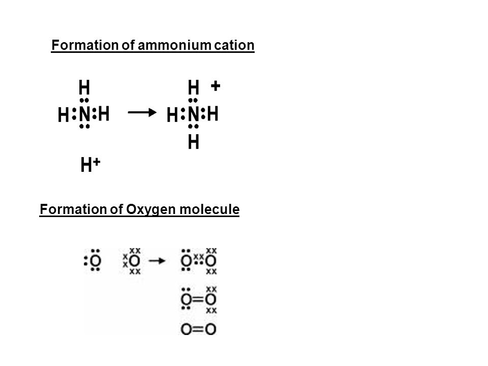 Formation of ammonium cation