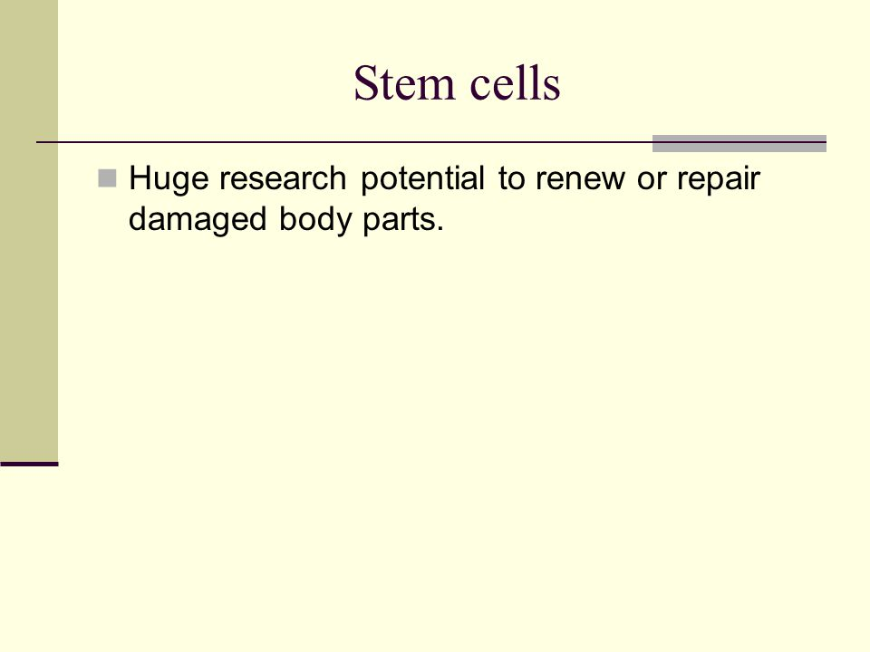 Stem cells Huge research potential to renew or repair damaged body parts.