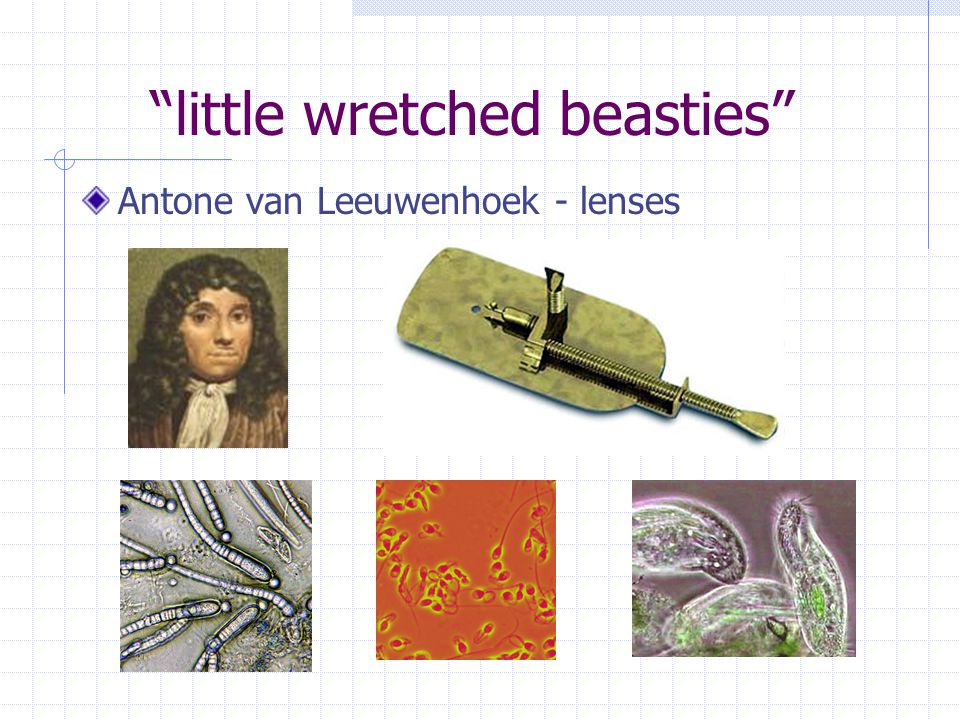 little wretched beasties