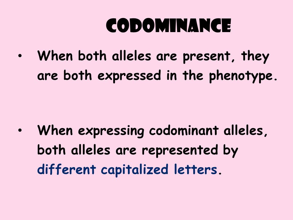 codominance When both alleles are present, they are both expressed in the phenotype.