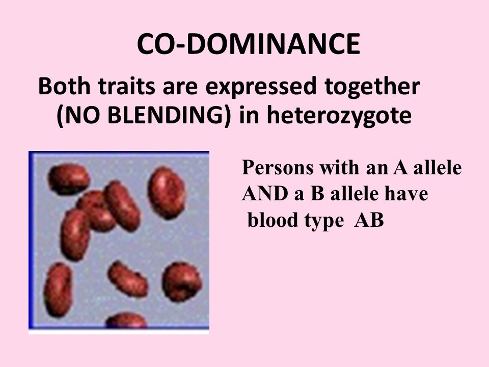 CO-DOMINANCE Both traits are expressed together (NO BLENDING) in heterozygote.