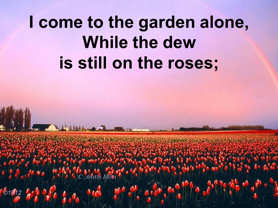 I come to the garden alone, While the dew is still on the roses;