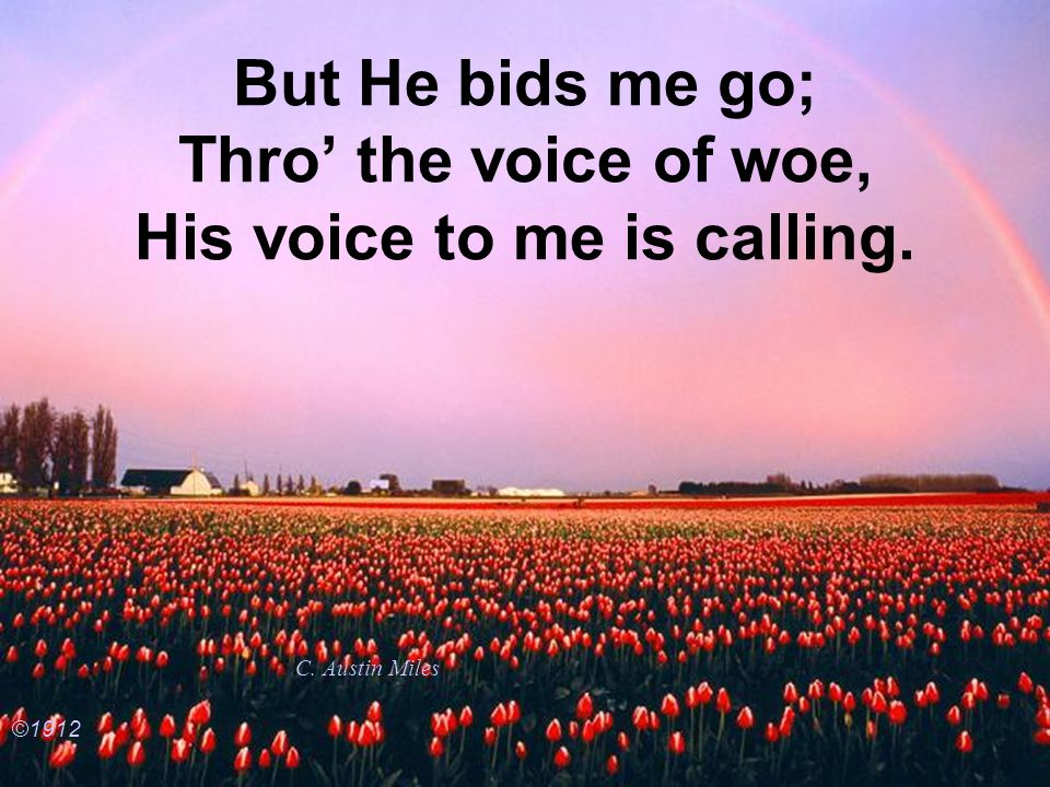 But He bids me go; Thro' the voice of woe, His voice to me is calling.