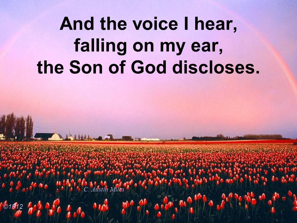 And the voice I hear, falling on my ear, the Son of God discloses.