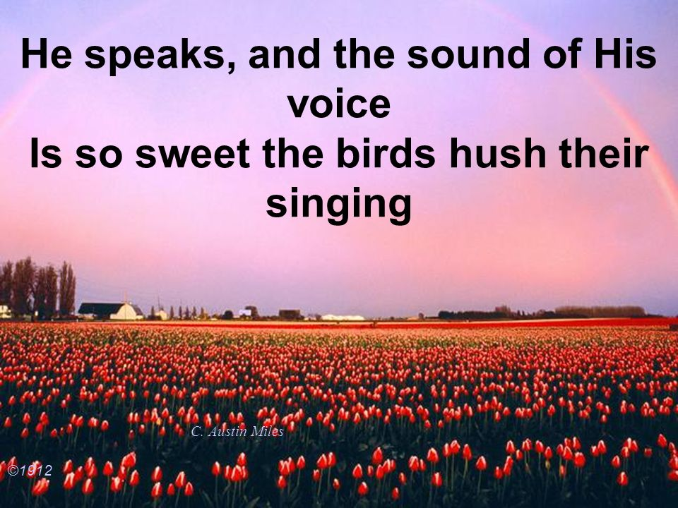He speaks, and the sound of His voice Is so sweet the birds hush their singing