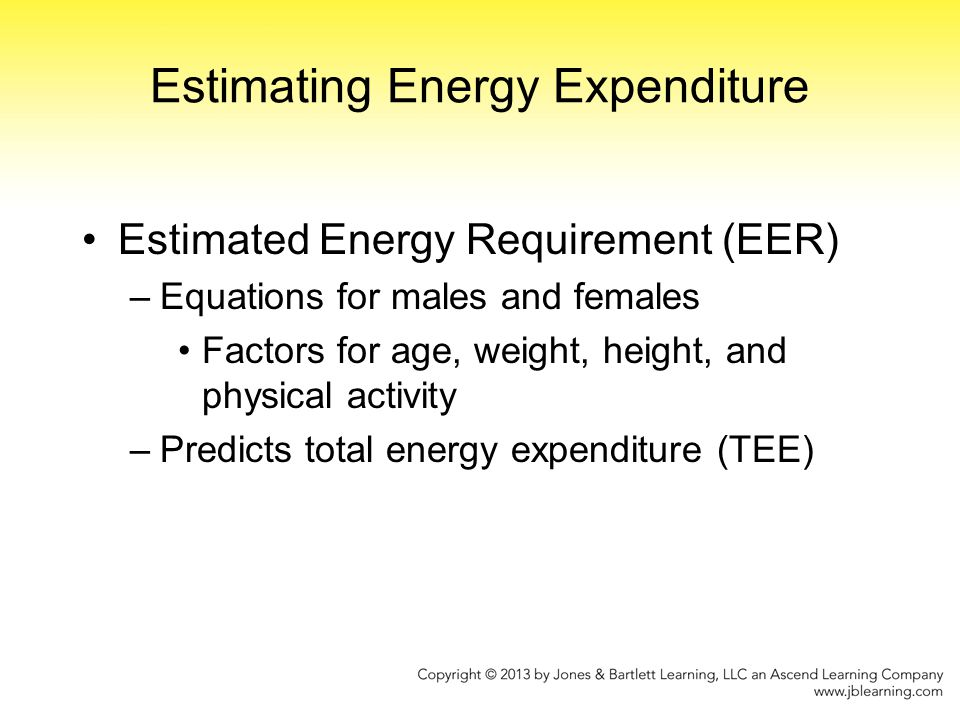 Estimating Energy Expenditure