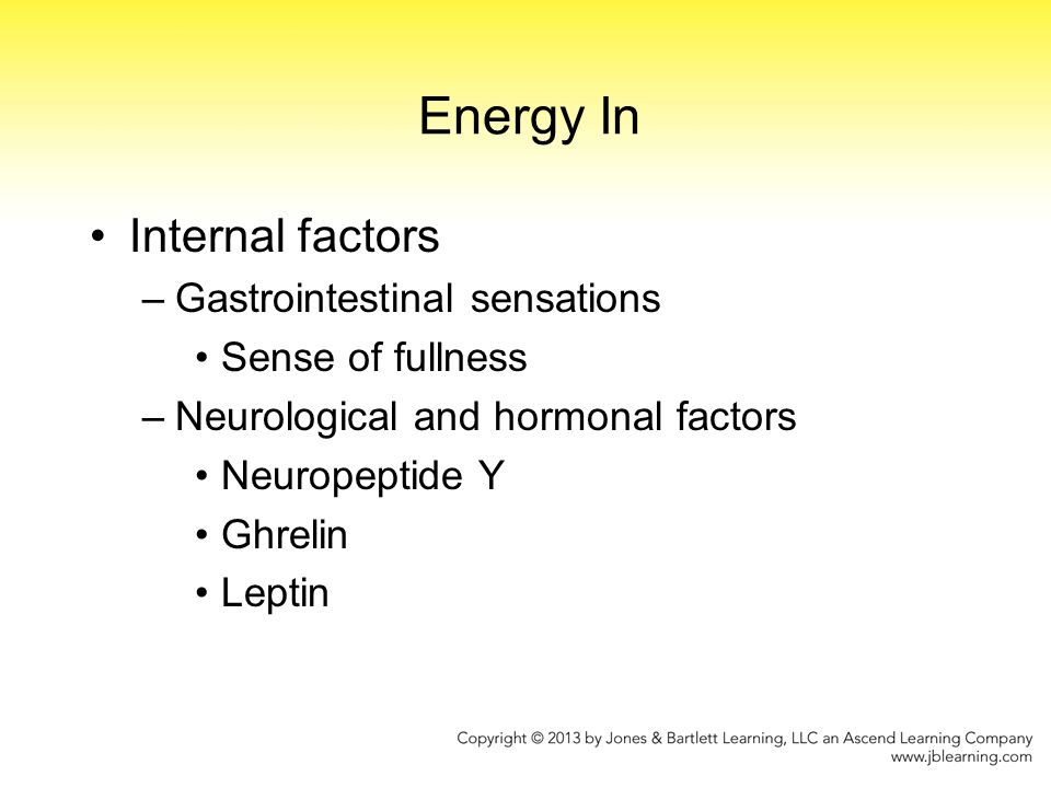 Energy In Internal factors Gastrointestinal sensations