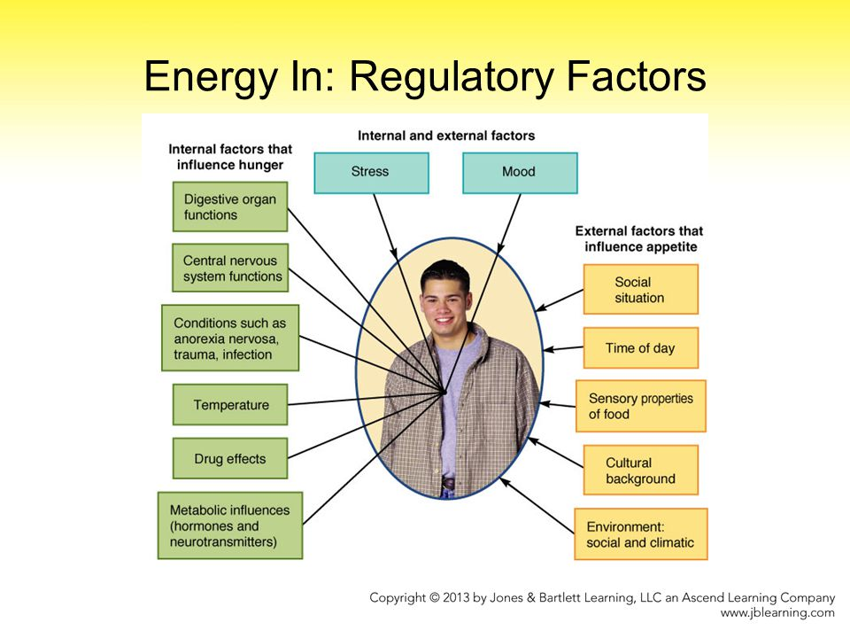 Energy In: Regulatory Factors