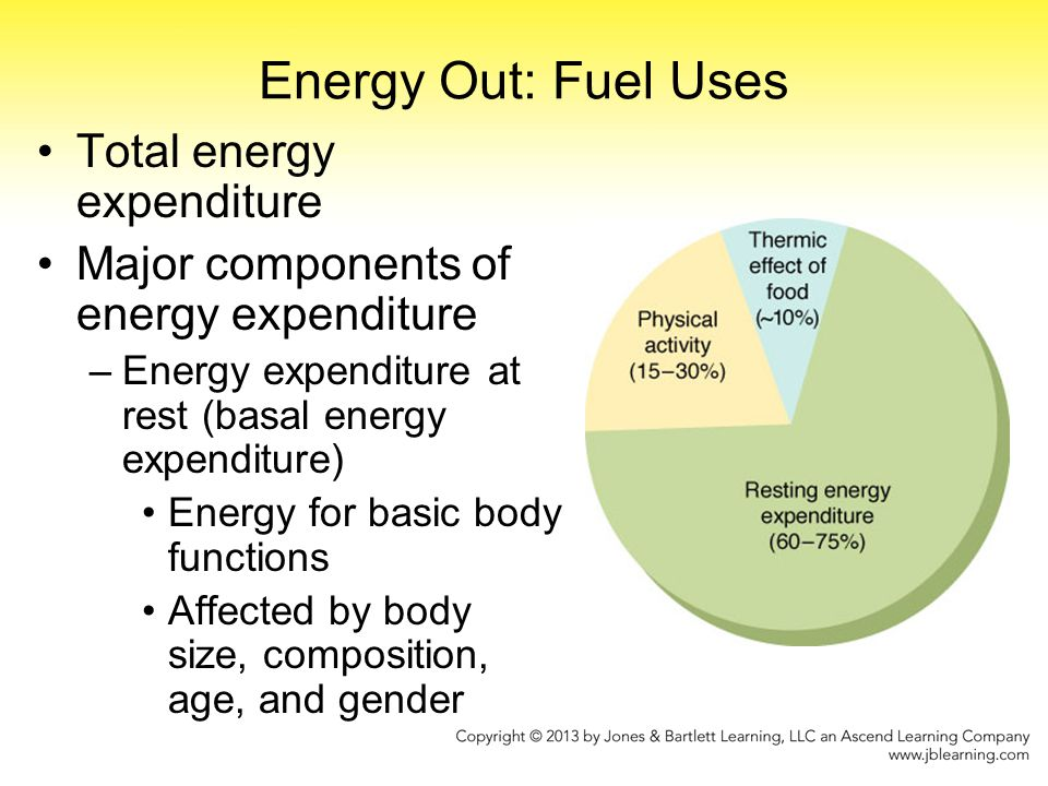 Energy Out: Fuel Uses Total energy expenditure