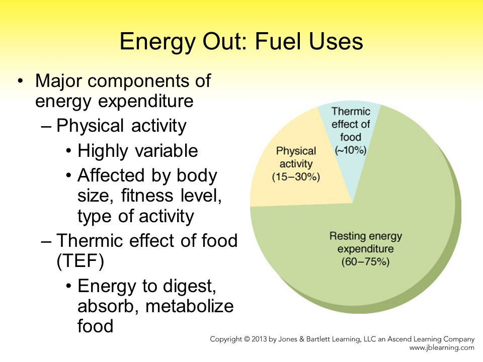 Energy Out: Fuel Uses Major components of energy expenditure