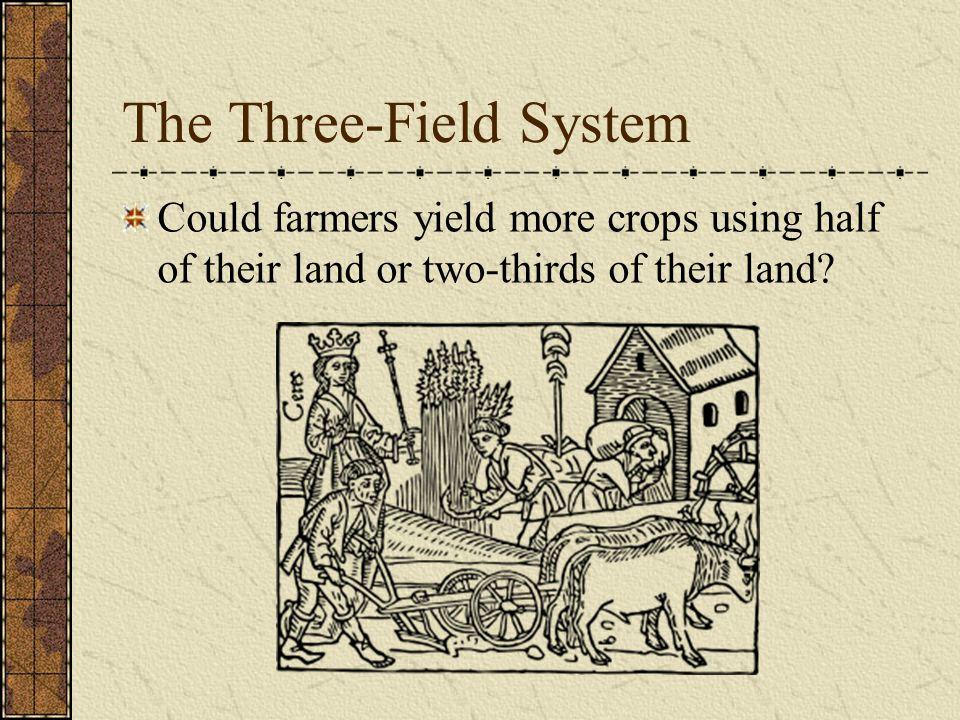 The Three-Field System