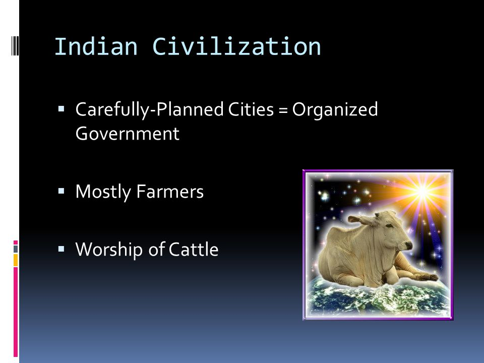 Indian Civilization Carefully-Planned Cities = Organized Government