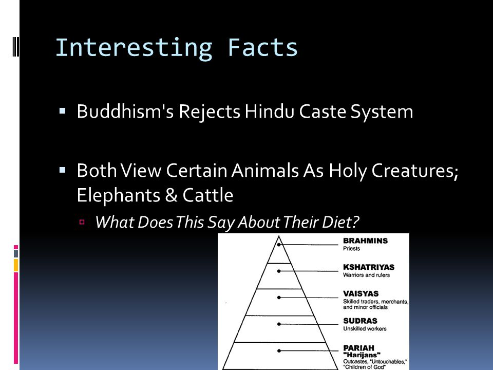 Interesting Facts Buddhism s Rejects Hindu Caste System
