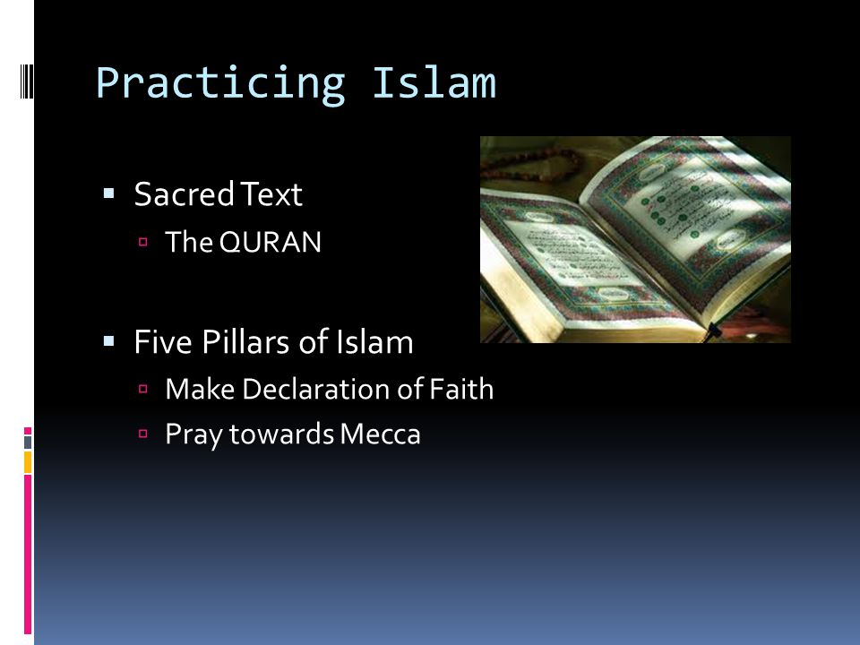 Practicing Islam Sacred Text Five Pillars of Islam The QURAN
