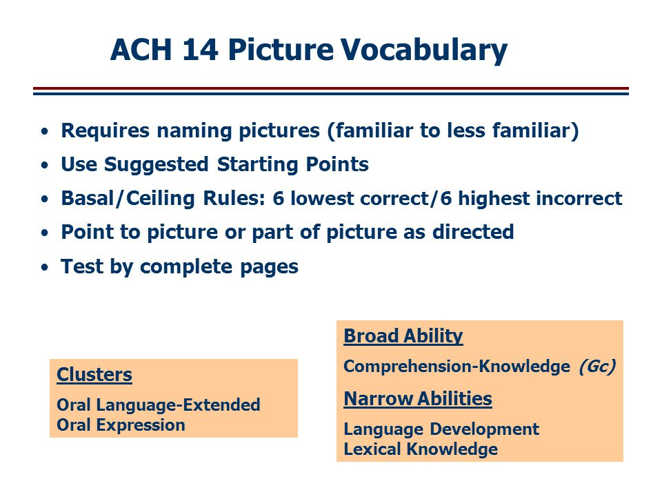 ACH 14 Picture Vocabulary