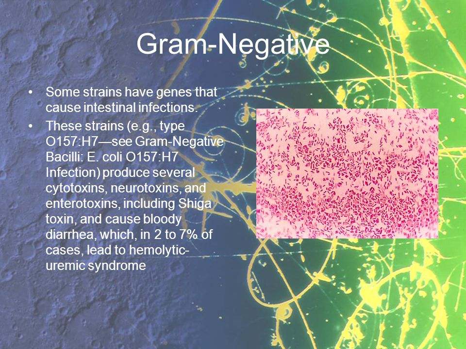 Gram-Negative Some strains have genes that cause intestinal infections.