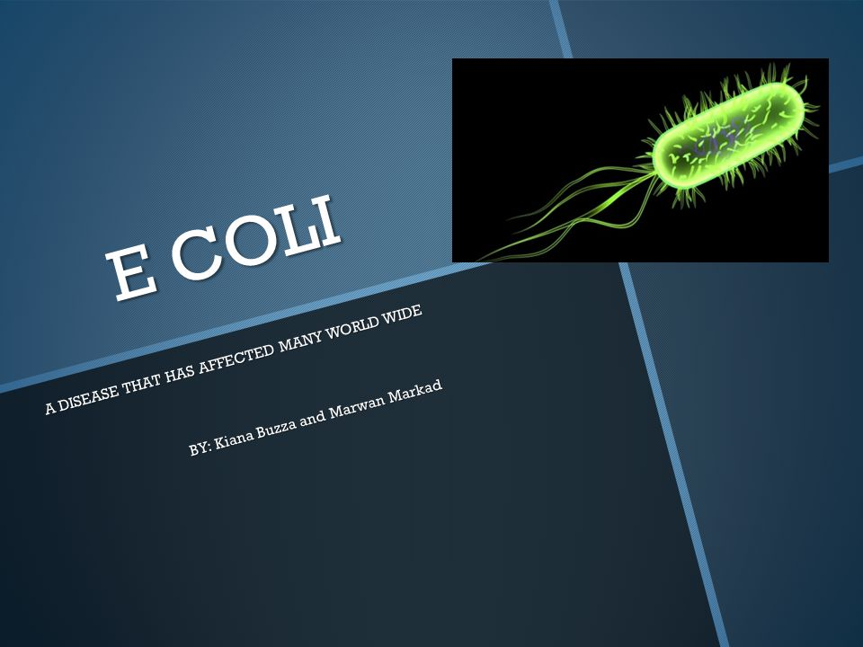 E COLI A DISEASE THAT HAS AFFECTED MANY WORLD WIDE