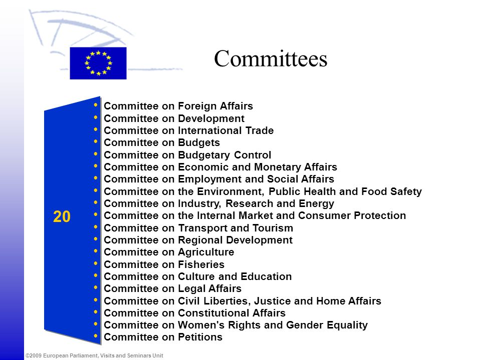 Committees 20 Committee on Foreign Affairs Committee on Development