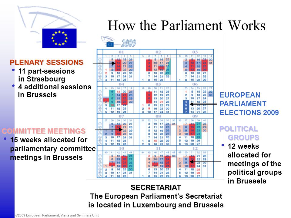 How the Parliament Works