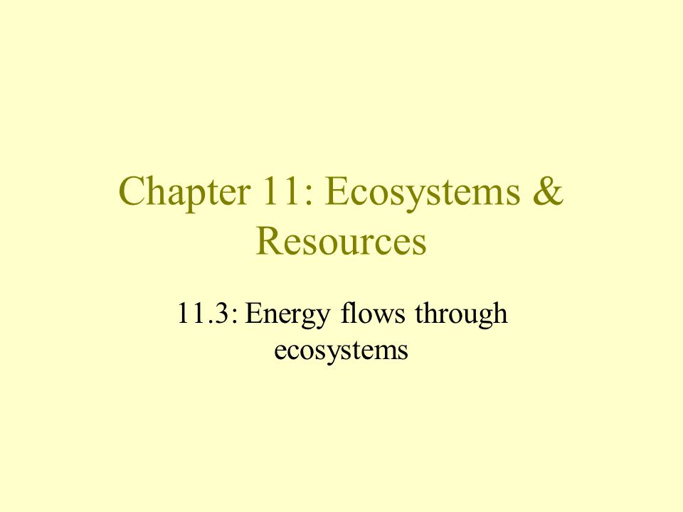 Chapter 11: Ecosystems & Resources