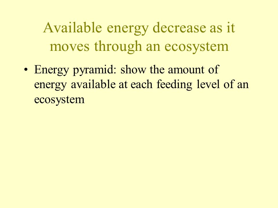 Available energy decrease as it moves through an ecosystem