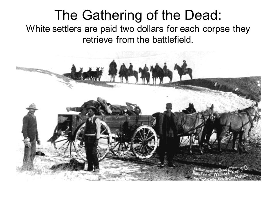 The Gathering of the Dead: White settlers are paid two dollars for each corpse they retrieve from the battlefield.