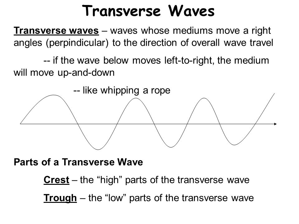 Transverse Waves Transverse waves – waves whose mediums move a right angles (perpindicular) to the direction of overall wave travel.
