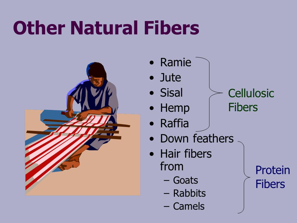 Other Natural Fibers Ramie Jute Sisal Hemp Raffia Cellulosic Fibers