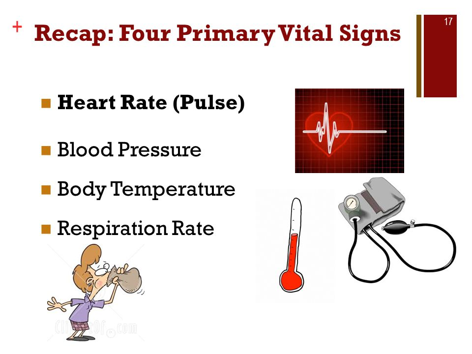 Recap: Four Primary Vital Signs