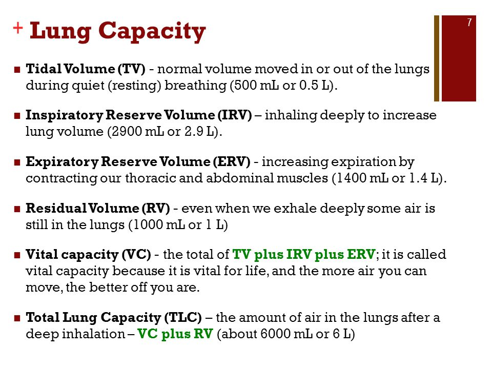 Lung Capacity Tidal Volume (TV) - normal volume moved in or out of the lungs during quiet (resting) breathing (500 mL or 0.5 L).