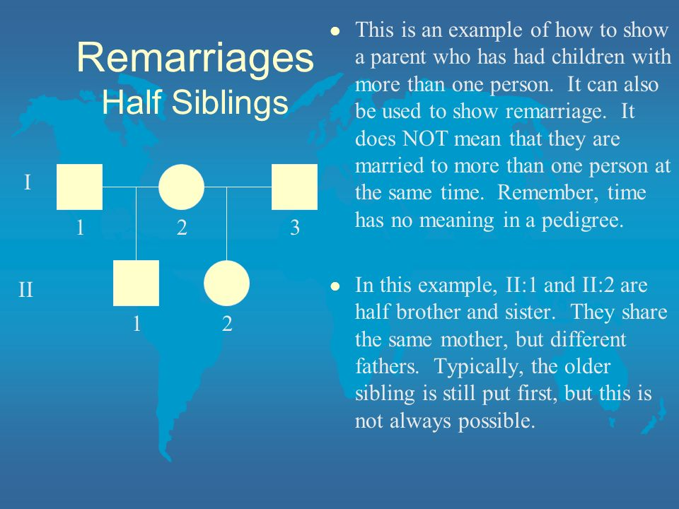 Remarriages Half Siblings