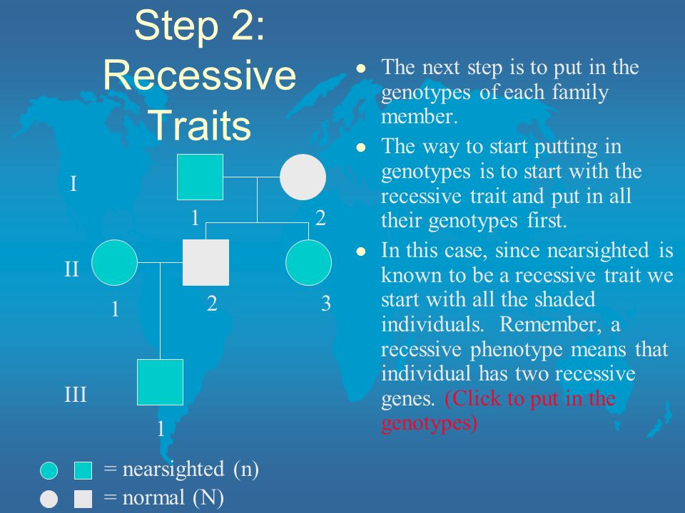 Step 2: Recessive Traits