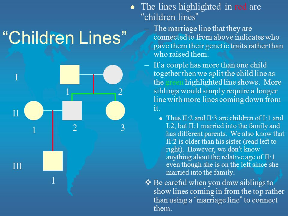 Children Lines The lines highlighted in red are children lines 1 2