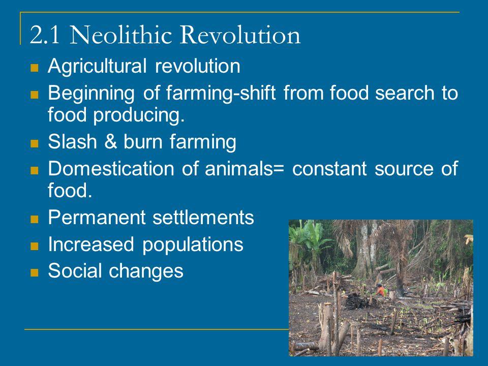 2.1 Neolithic Revolution Agricultural revolution