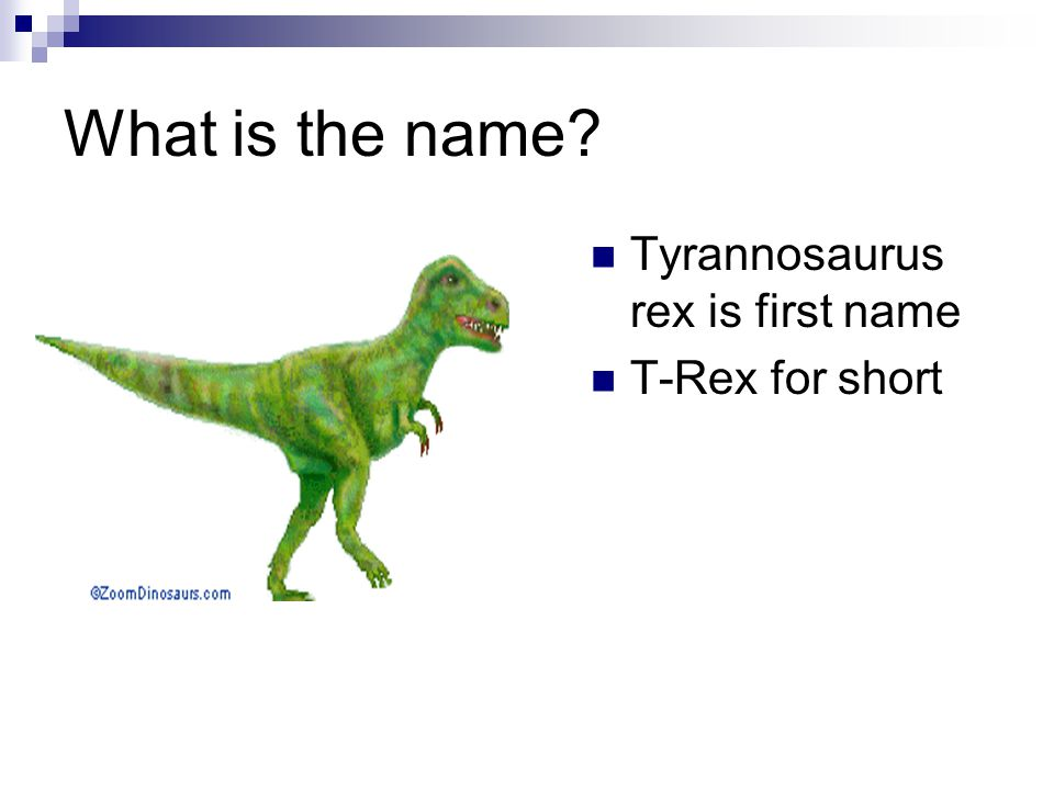 What is the name Tyrannosaurus rex is first name T-Rex for short