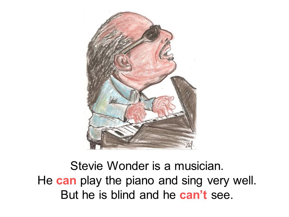 Stevie Wonder is a musician. He can play the piano and sing very well.