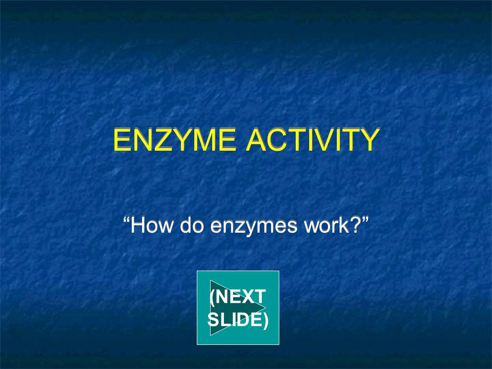 ENZYME ACTIVITY How do enzymes work (NEXT SLIDE)