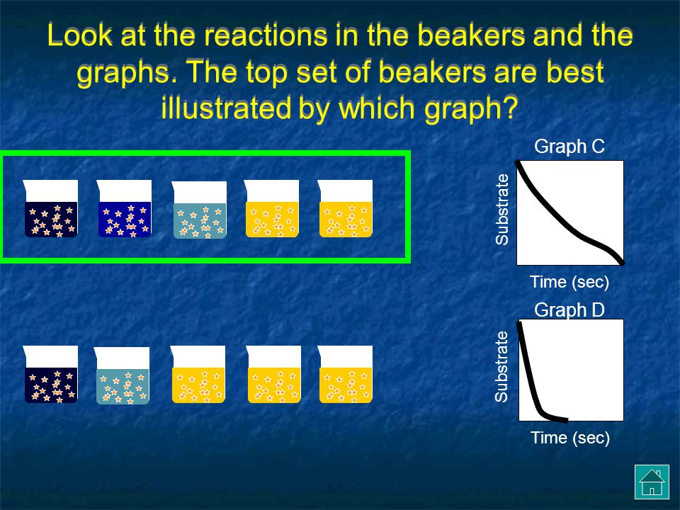 Look at the reactions in the beakers and the graphs