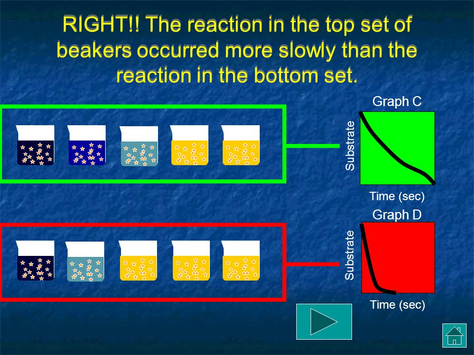 RIGHT!! The reaction in the top set of beakers occurred more slowly than the reaction in the bottom set.