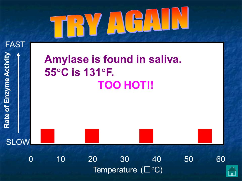 TRY AGAIN Amylase is found in saliva. 55C is 131F. TOO HOT!! FAST