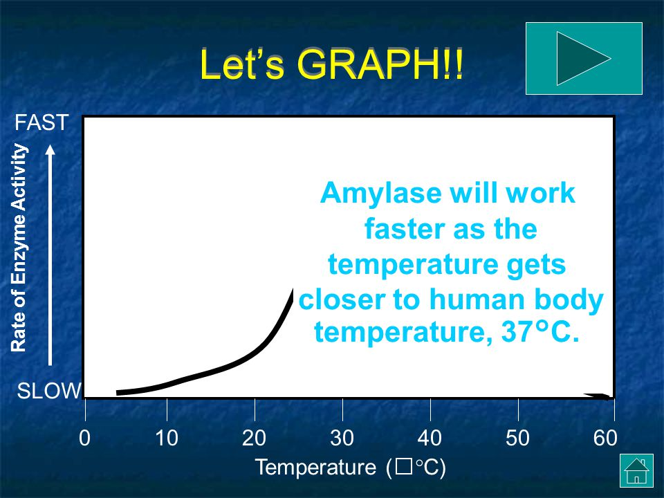 Let's GRAPH!! Amylase will work faster as the temperature gets