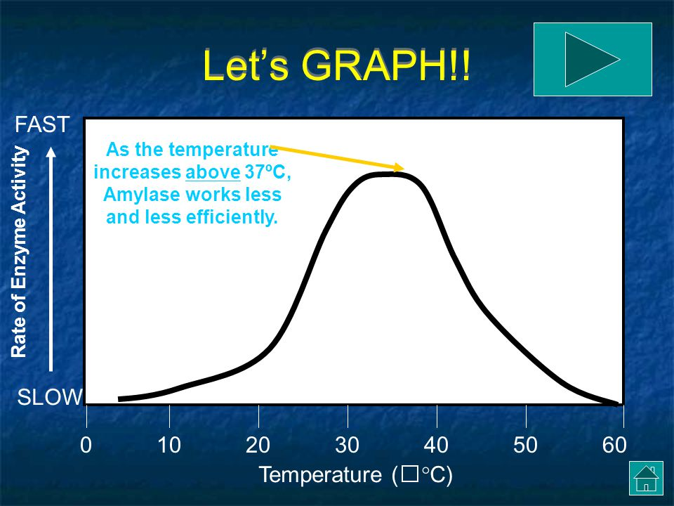 Let's GRAPH!! FAST SLOW 10 20 30 40 50 60 Temperature (C)