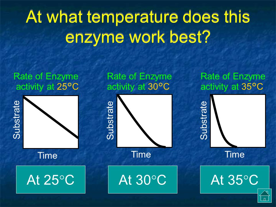 At what temperature does this enzyme work best